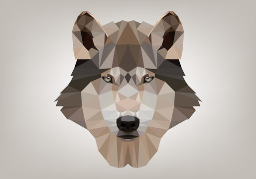 Lupo Low Poly