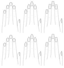 手と爪の形