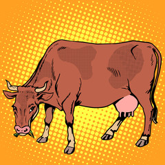 Cow eating grass farm animals