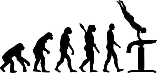 Evolution vaulting table