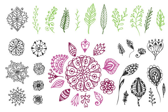 Nature collection. Hand drawn vector illustration with zentangle doodle flowers and branches. For coloring page and design decoration
