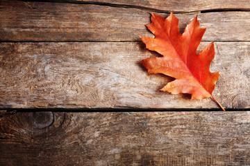 Oak leaf on wooden background