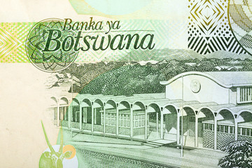 Detail of 10 Botswana Pula banknote