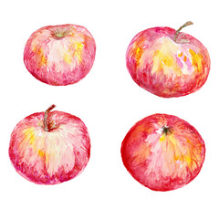 Set of four isolated watercolor red apples. Hand Drawn design elements  for recipe, cooking site, invitation, menus, greeting card and other printing projects.