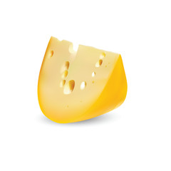 Cheese for your proper nutrition