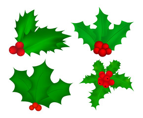 Holly berry, Christmas leaves and fruits icon, symbol, design. Winter vector illustration isolated on white background.