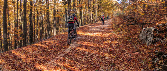 Riding bicycle through country roads in autumn