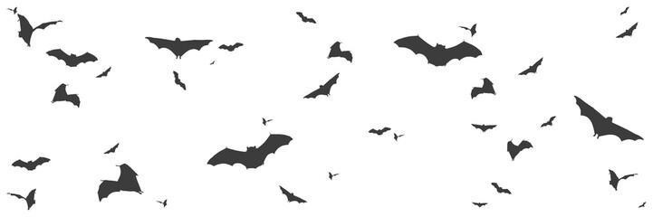 Silhouetten von Fledermäusen im Panorama
