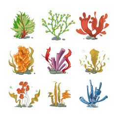 Wall Mural - Underwater plants in cartoon vector style