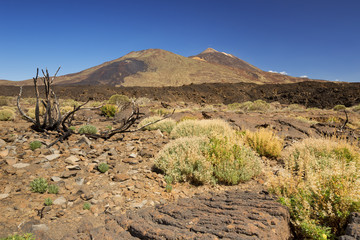 Mount Teide on Tenerife, Canary Islands, Spain