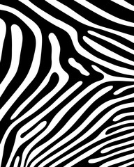 Black print pattern, skin of zebra, vector