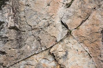 Parete rocciosa