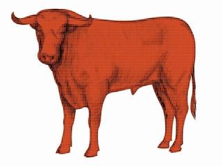 silhouette bull, vector illustration