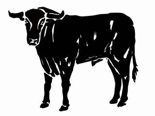silhouette bull, grunge vector illustration