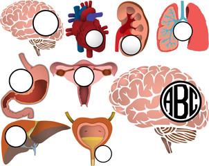 Organs Logo - fo34