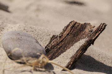 Skarby plaży