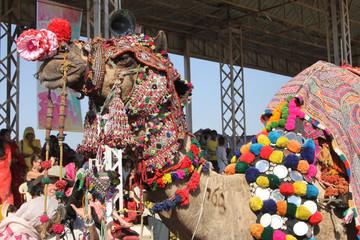 Camel decorated at the Pushkar Camel Fair, India