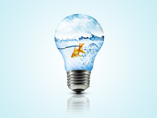Environment of gold fish inside bulb
