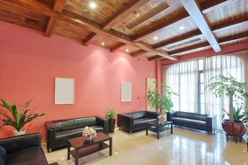 decoration and furniture of lounge