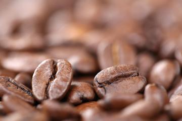 Kaffeebohnen Kaffee Bohnen mit Textfreiraum