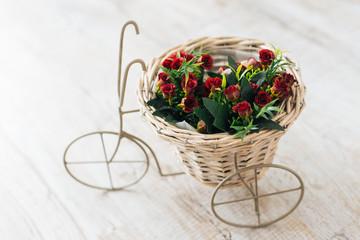 roses in original bike vase