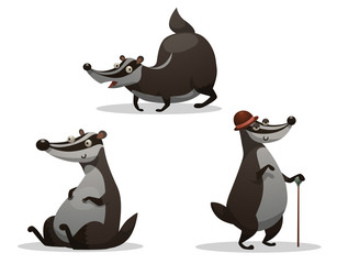 Vector Set of fat badgers. Cartoon image of three funny fat gray-black badgers in various poses on a light background.