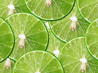 green lime pattern background