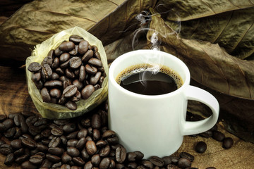 Fresh coffee and roasted coffee beans