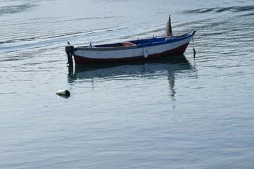 Vecchia barca a remi in legno con due gabbiani a bordo