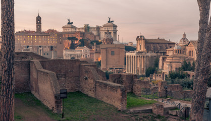 Fototapete - Rome, Italy: Roman Forum and Old Town of the city