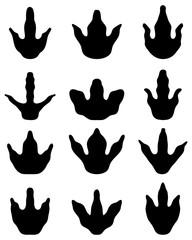Different black footprints of dinosaur, vector