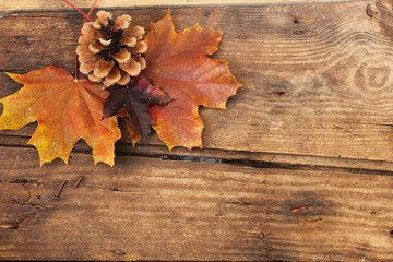 Top view of autumn leaves and pine cone over wooden textured background with copy space