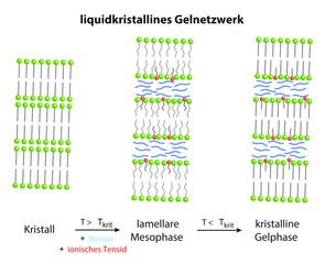 Herstellung eines liquidkristallinen Gelnetzwerks