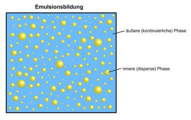 Phasen einer Emulsion