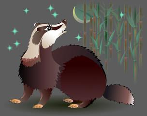 Badger looking at the moon, vector cartoon image.