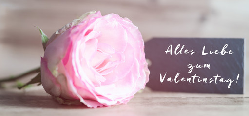 Alles Liebe Zum Valentinstag, Gratulation Mit Text, Rose