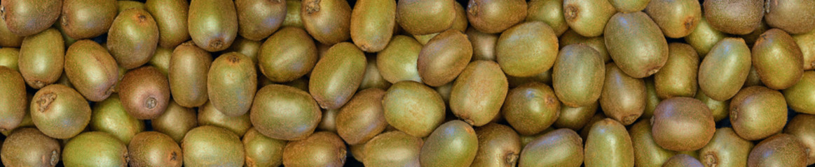 Fototapete - Kiwi - (Aktinidia) - owoc