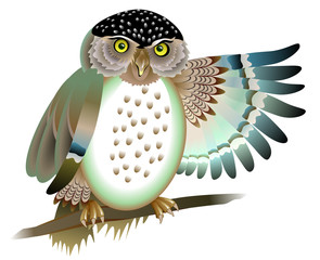 Illustration of owl siting on the branch, vector cartoon image.