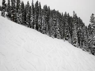Slope of a ski run at Purgatory in Durango, Colorado