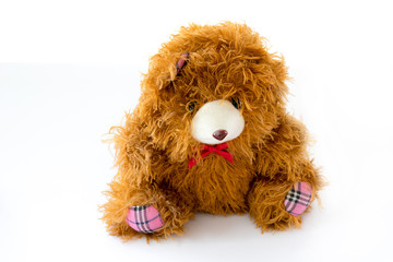 brown teddy bear doll isolated on white
