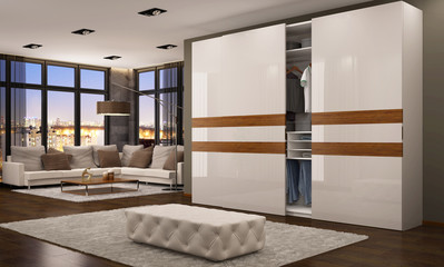 Modern wardrobe in the living room