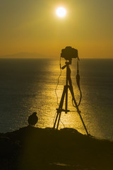 Photographic camera and a bird against a beautiful sunset.
