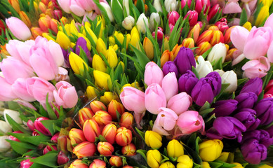 Tulips bouquets for Mother's Day - Valentines Day, romantic garden or dinner!
