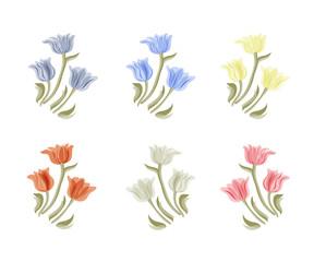 Tulips flowers illustration. Vintage vector set. Isolated spring vintage tulip