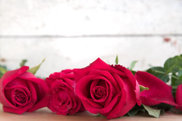 roses for valentine day, love concept for valentines day, wedding and anniversary