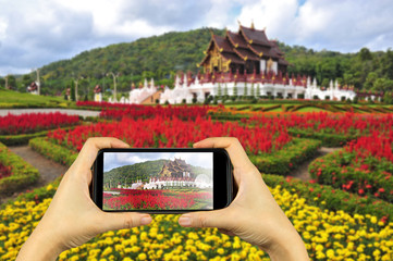 royal flora park in Chiangmai, Thailand. Taking photo on smart p
