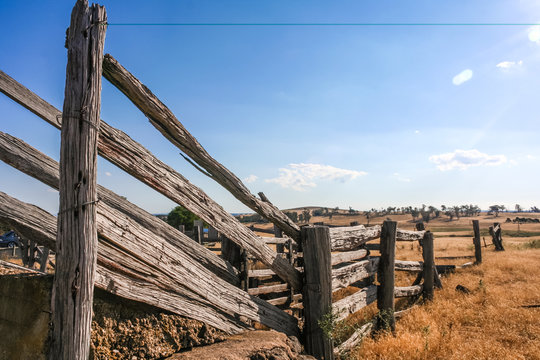 Old dilapidated wooden cattle race fence in the country