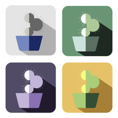 Vector icon. Set of colorful icons of cactus, isolated on the white background