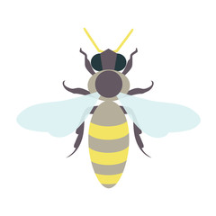 Honey bee logo template. Isolated vector illustration can be used as a logo, icon, pictogram or an infographic element. Perfect for your design.