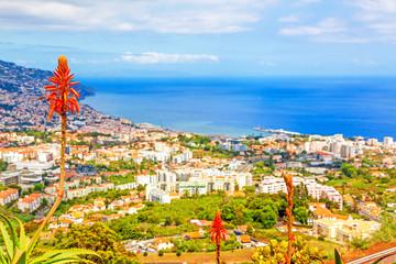 Funchal, Madeira Fototapete